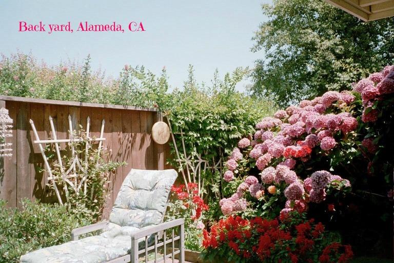 60321_18-Alameda