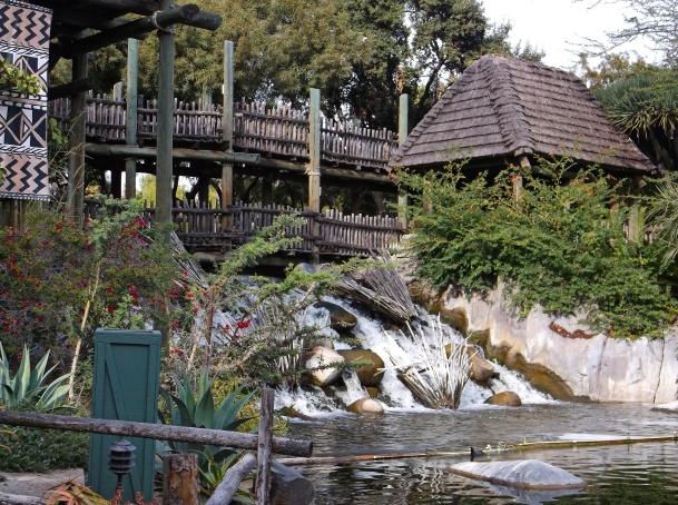 Waterfall at San Diego Zoo's Safari Park