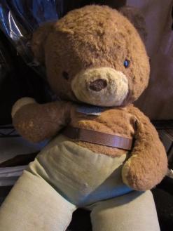 My beloved Smoky the Bear