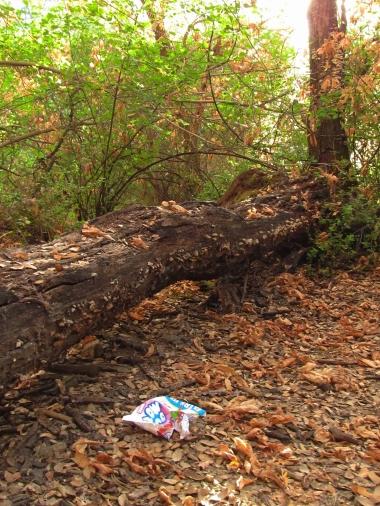 Trash log