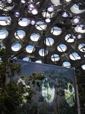 Inside the Rainforest dome, California Academy of Sciences, San Francisco