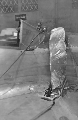 """""""Duke's 'Button Nose,"""" #42, after it crashed"""