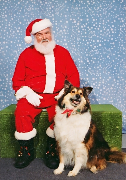 Casey, Christmas 1997
