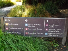Botanical Garden in Golden Gate Park